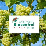 Andermatt Biocontrol Suisse and Ceradis Sign Exclusive Distribution Agreement for CeraSulfur